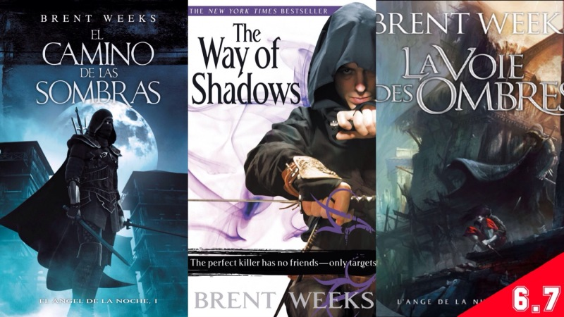 the way of the shadows book review